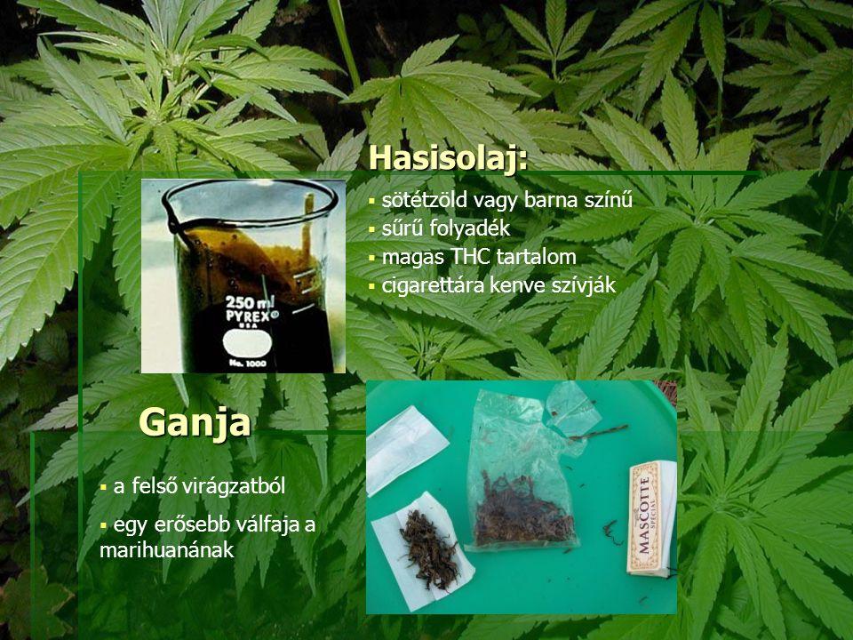 Ganja Hasisolaj: sötétzöld vagy barna színű sűrű folyadék