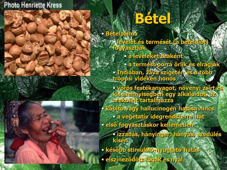 Bétel Bételpálma levelét és termését (a bételdiót) fogyasztják