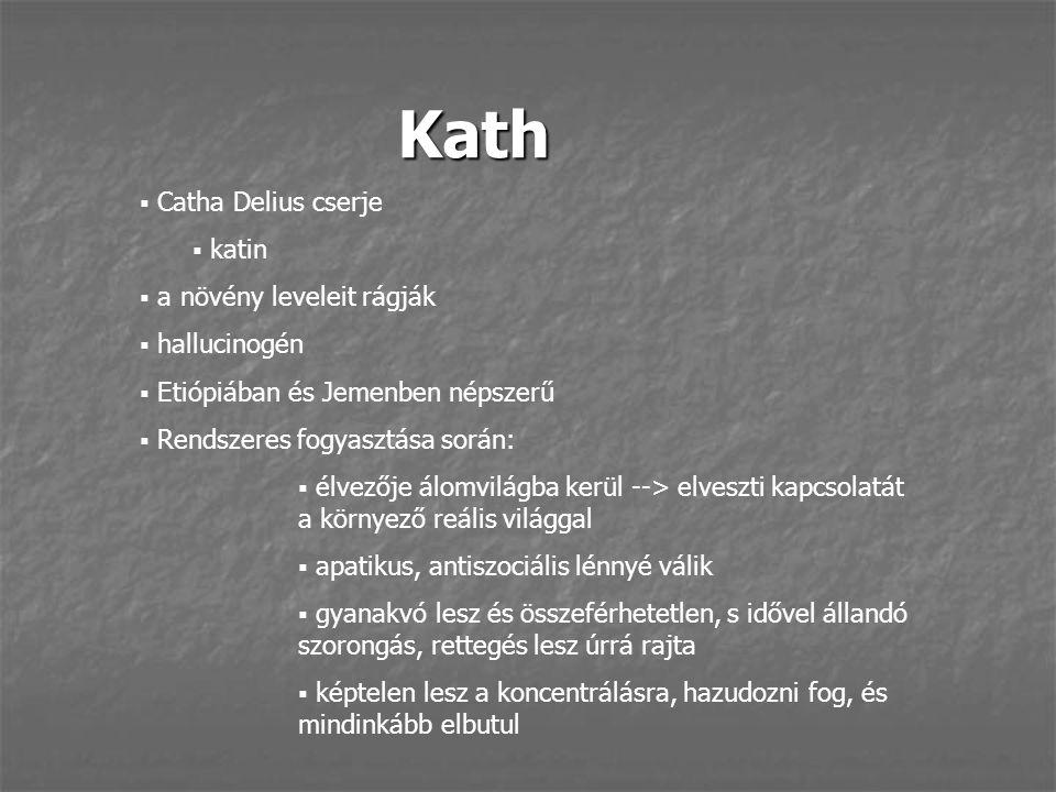Kath Catha Delius cserje katin a növény leveleit rágják hallucinogén