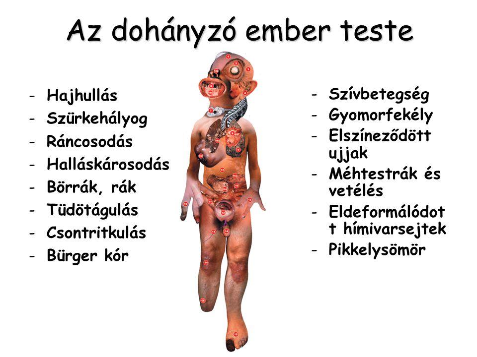 Az dohányzó ember teste