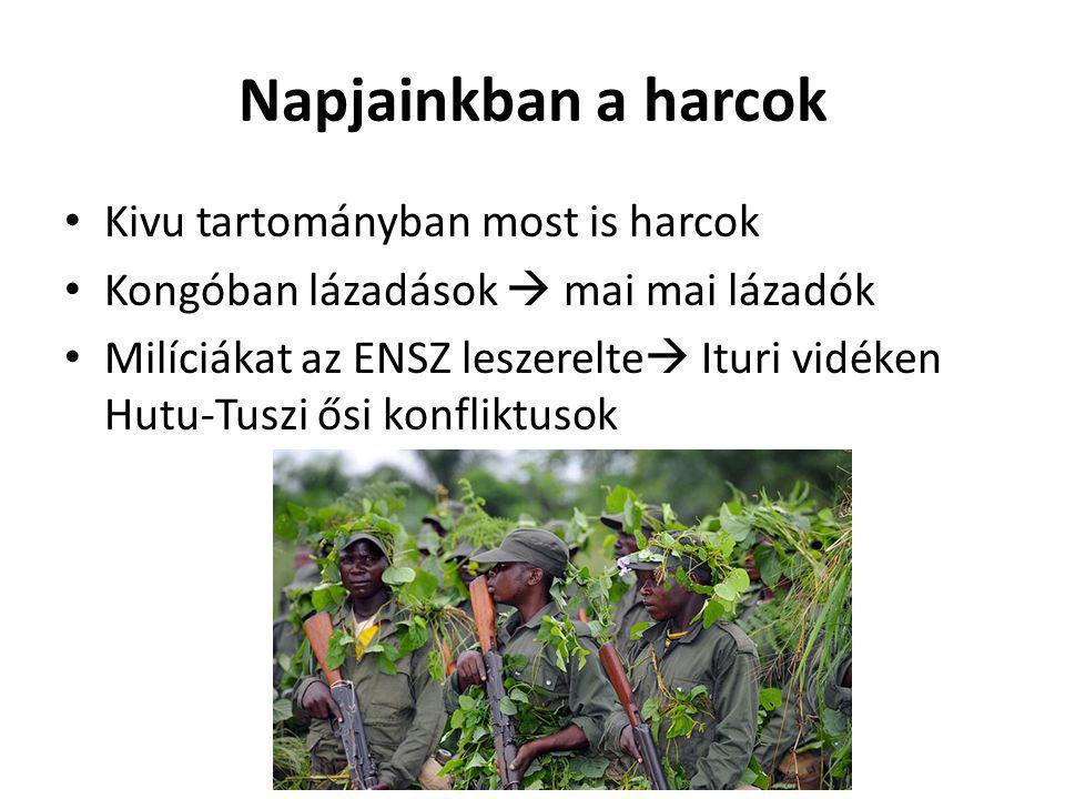 Napjainkban a harcok Kivu tartományban most is harcok