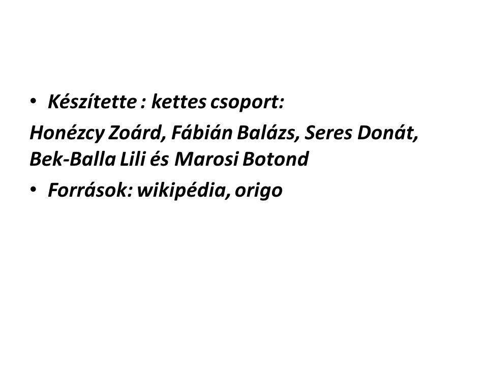 Készítette : kettes csoport: