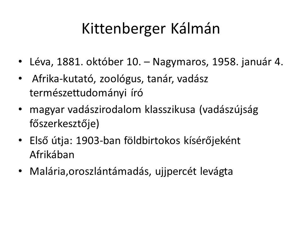 Kittenberger Kálmán Léva, 1881. október 10. – Nagymaros, 1958. január 4. Afrika-kutató, zoológus, tanár, vadász természettudományi író.