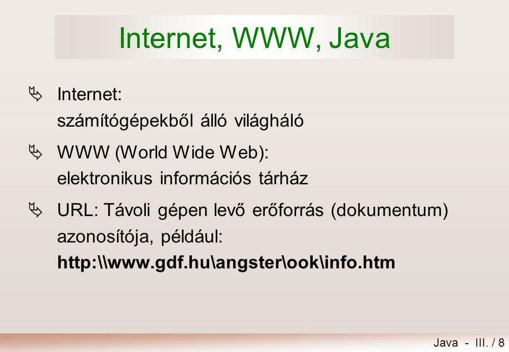 Internet, WWW, Java Internet: számítógépekből álló világháló