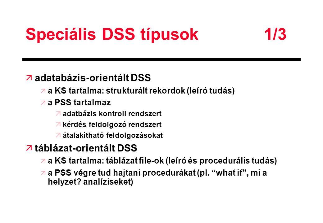 Speciális DSS típusok 1/3