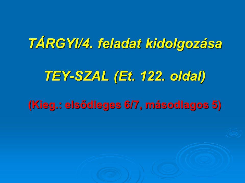 TÁRGYI/4. feladat kidolgozása (Kieg.: elsődleges 6/7, másodlagos 5)