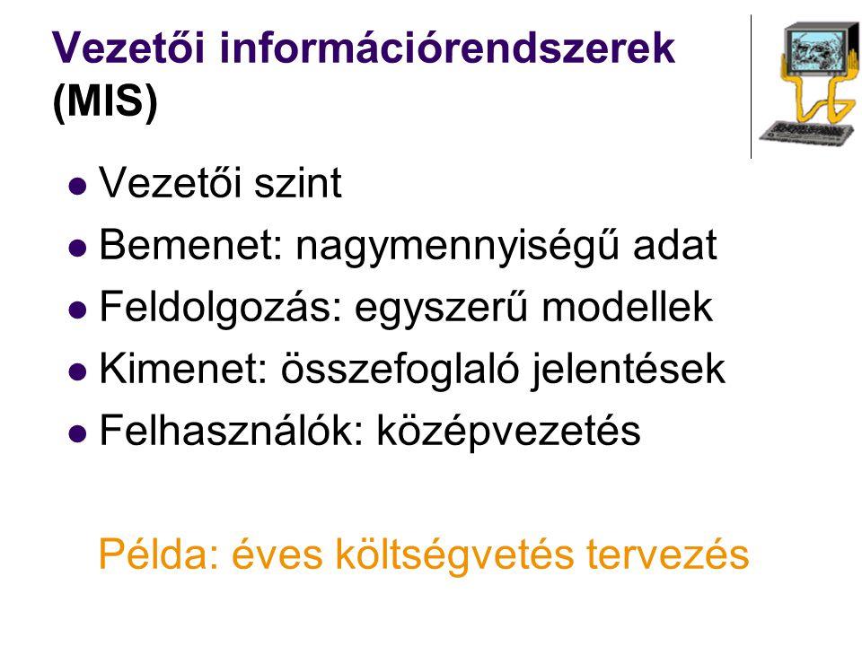 Vezetői információrendszerek (MIS)