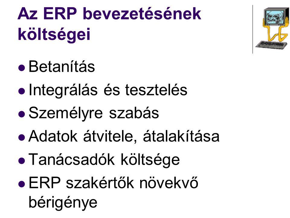 Az ERP bevezetésének költségei