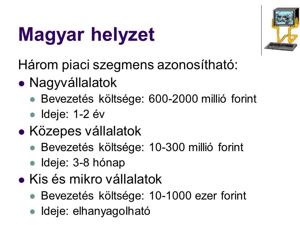 Magyar helyzet Három piaci szegmens azonosítható: Nagyvállalatok