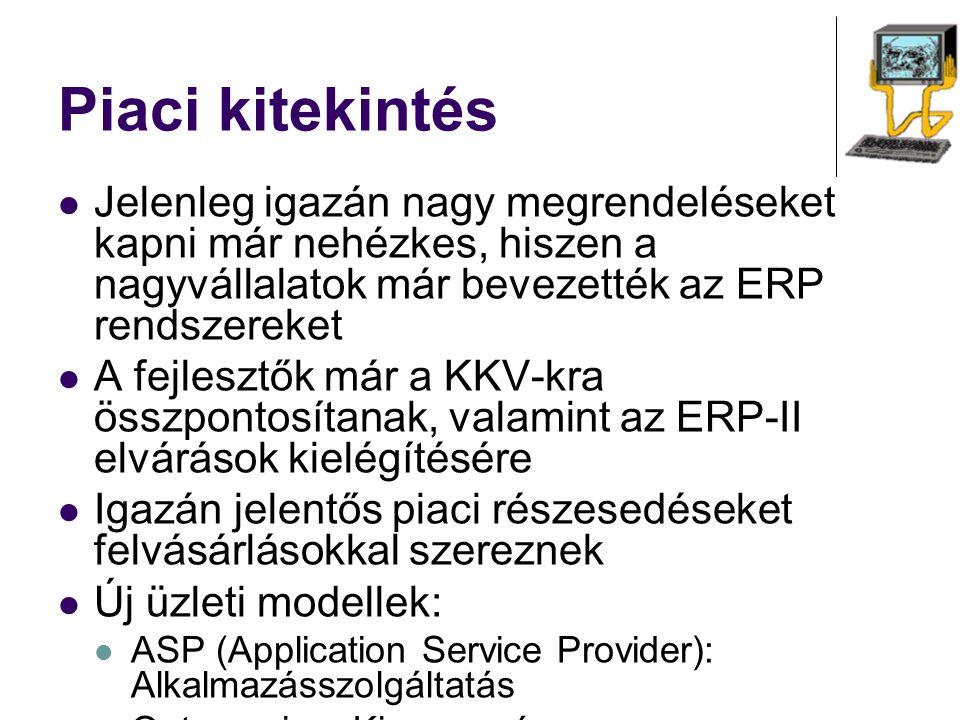 Piaci kitekintés Jelenleg igazán nagy megrendeléseket kapni már nehézkes, hiszen a nagyvállalatok már bevezették az ERP rendszereket.