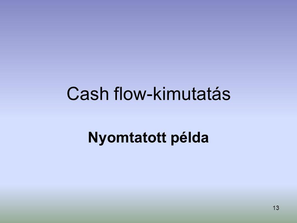 Cash flow-kimutatás Nyomtatott példa