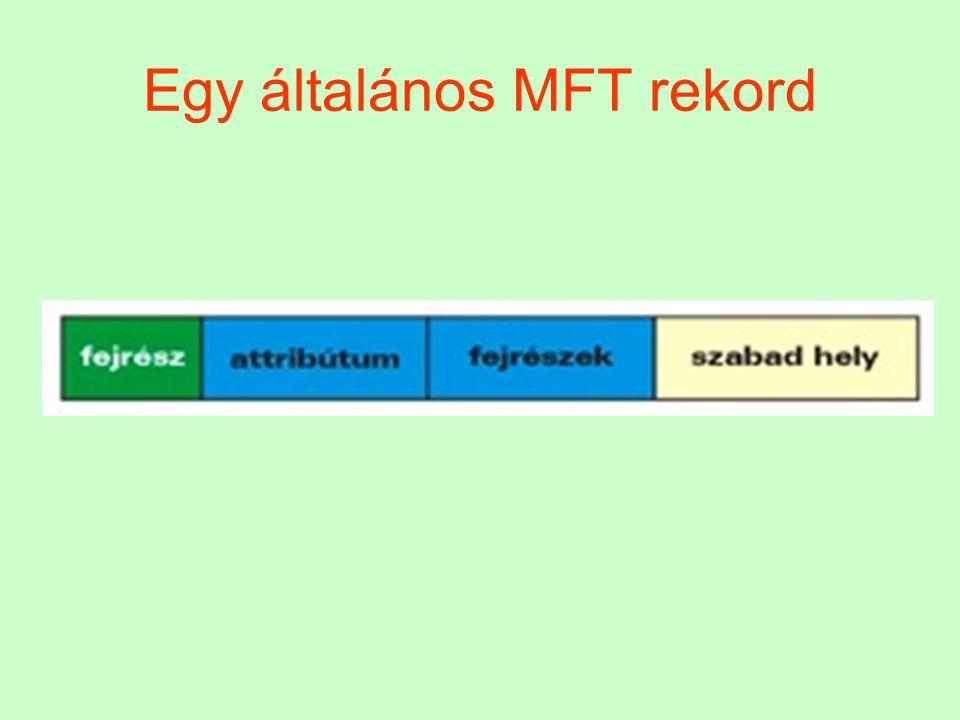 Egy általános MFT rekord