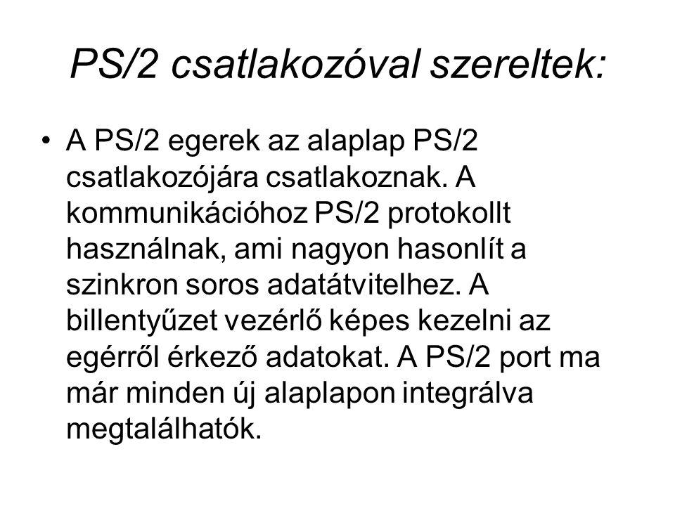 PS/2 csatlakozóval szereltek: