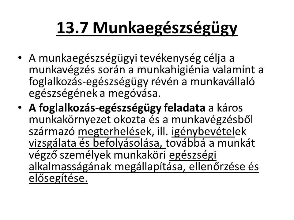 13.7 Munkaegészségügy