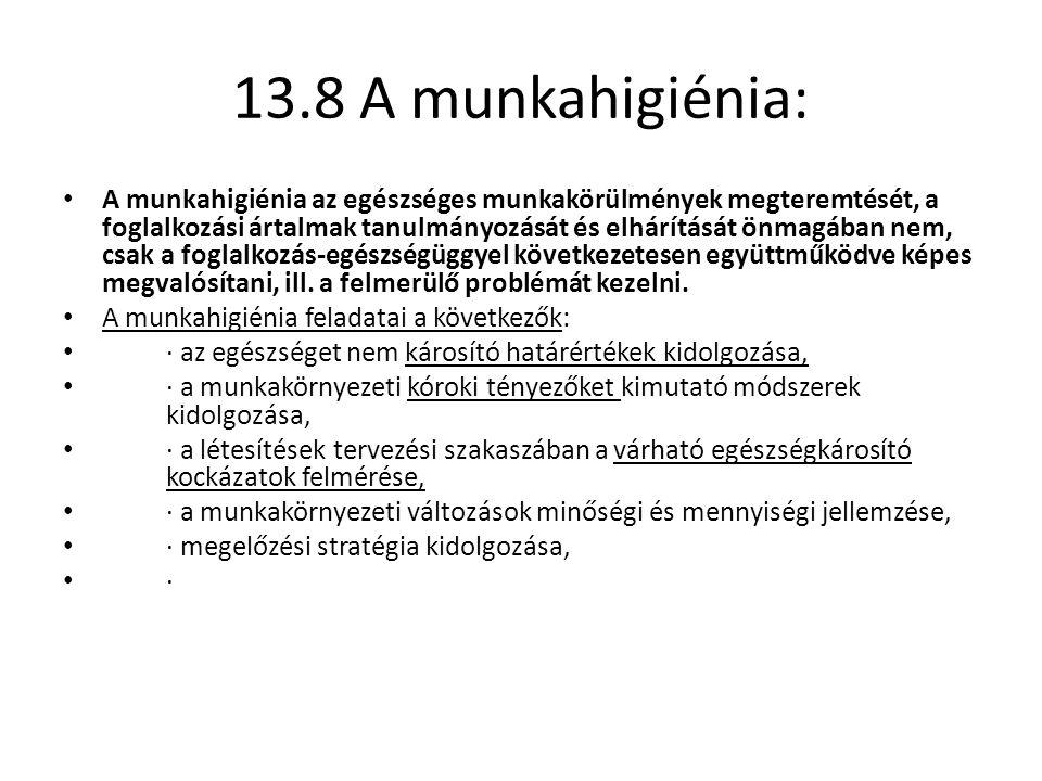 13.8 A munkahigiénia: