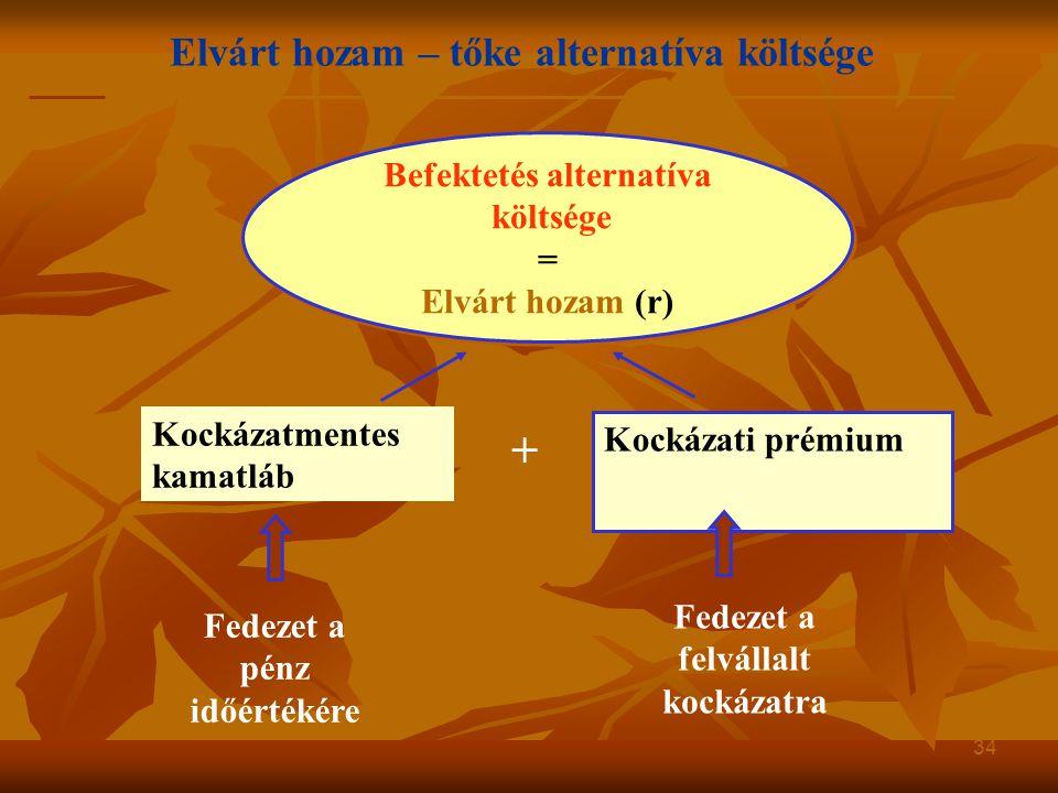 + Elvárt hozam – tőke alternatíva költsége Befektetés alternatíva