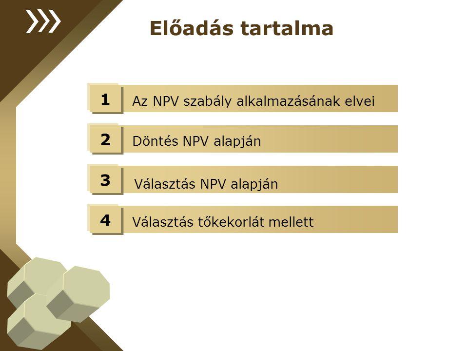 Választás NPV alapján Előadás tartalma