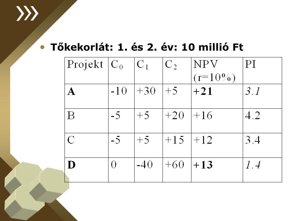 Tőkekorlát: 1. és 2. év: 10 millió Ft