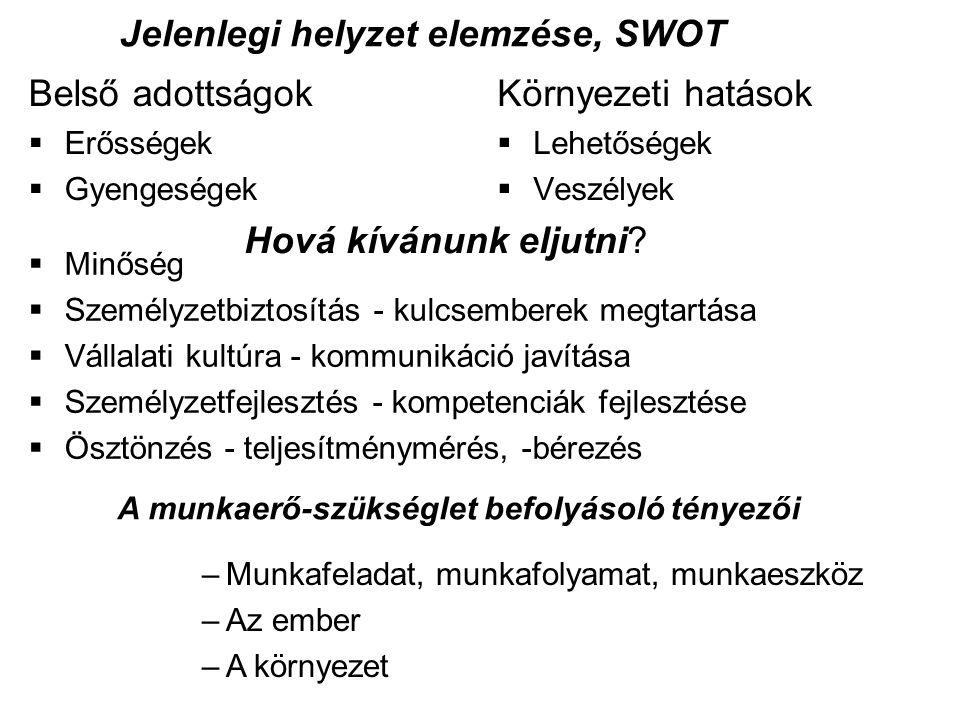Jelenlegi helyzet elemzése, SWOT