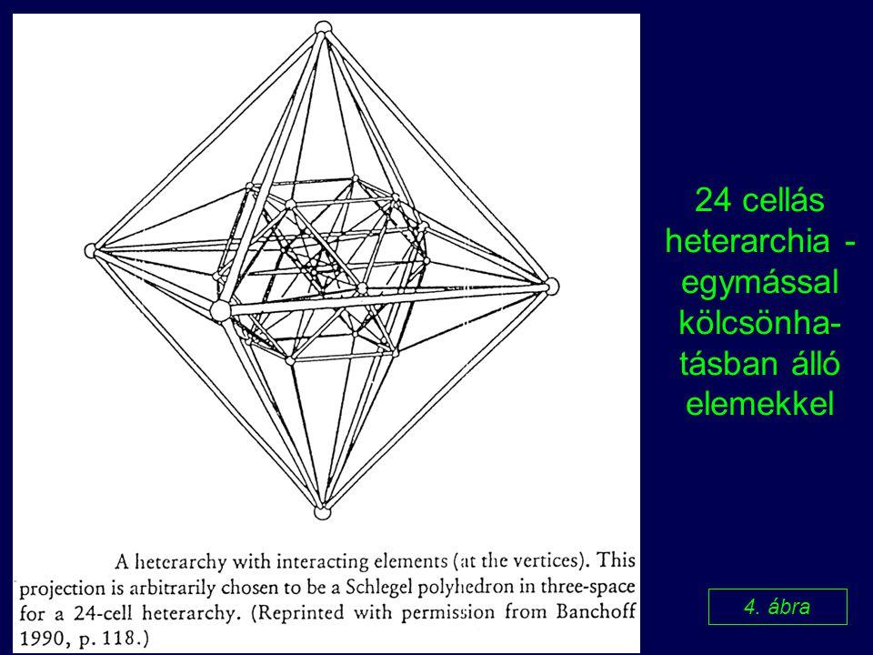 24 cellás heterarchia - egymással kölcsönha-tásban álló elemekkel