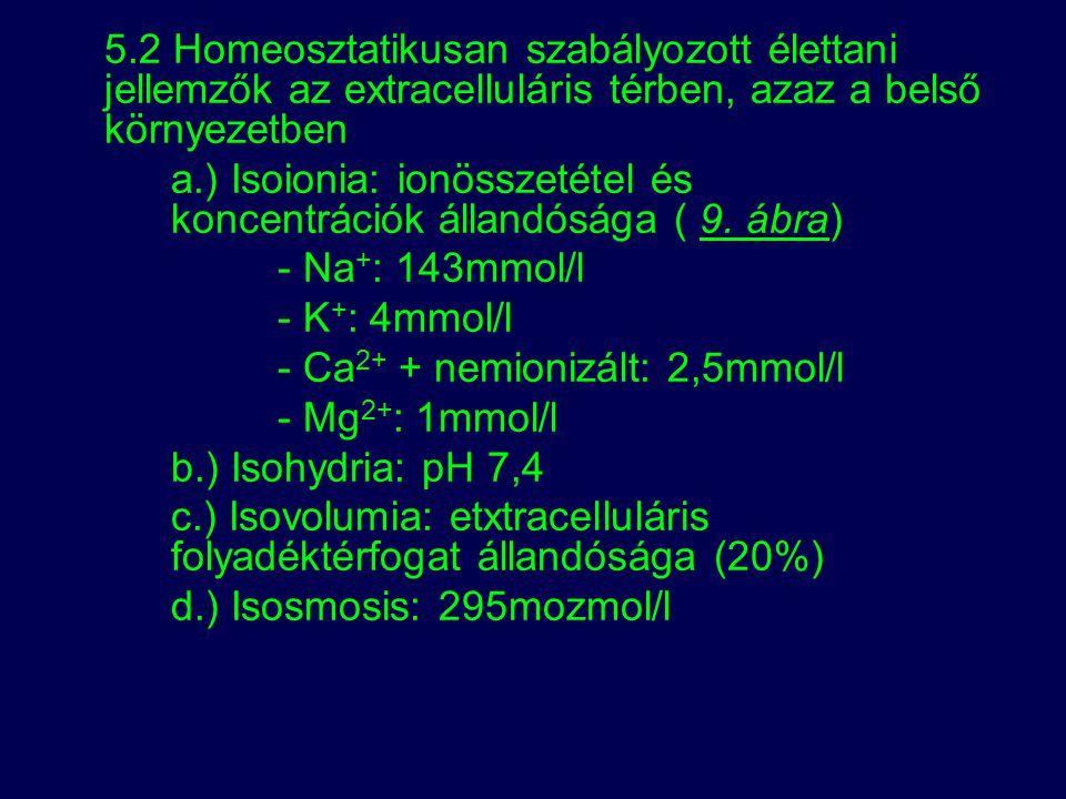 5.2 Homeosztatikusan szabályozott élettani jellemzők az extracelluláris térben, azaz a belső környezetben