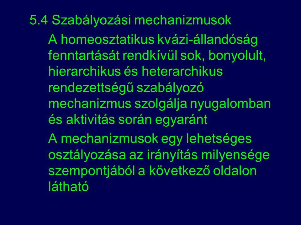5.4 Szabályozási mechanizmusok