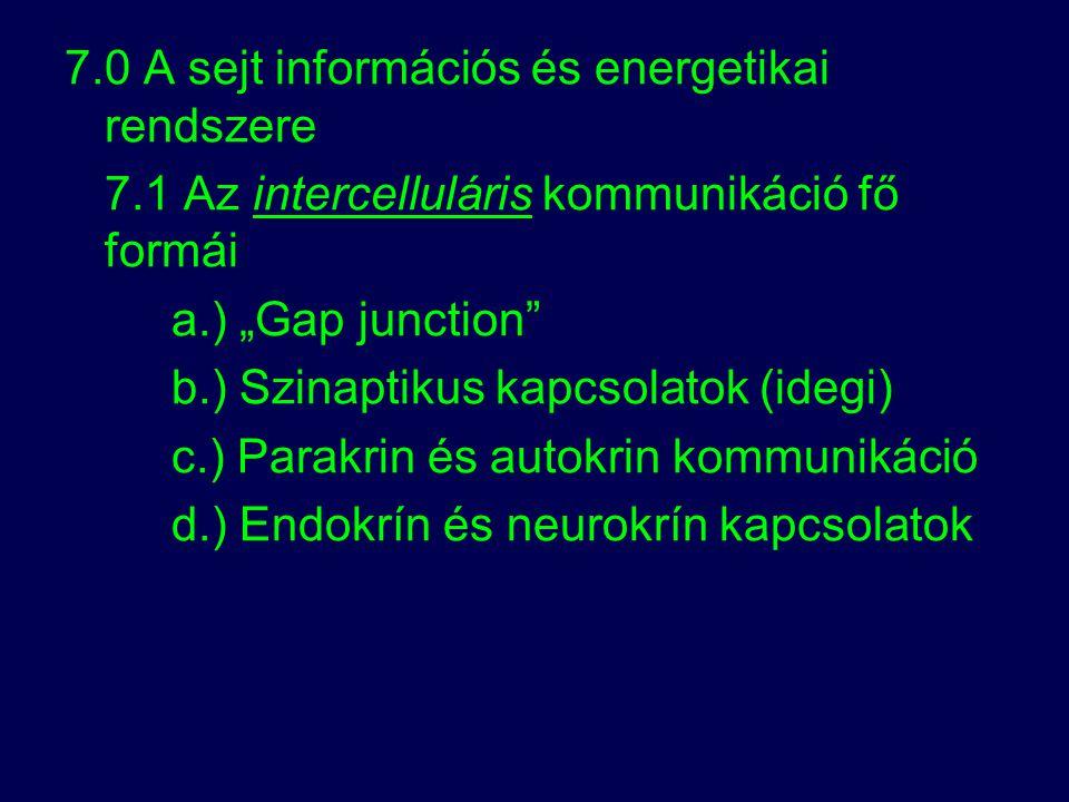 7.0 A sejt információs és energetikai rendszere