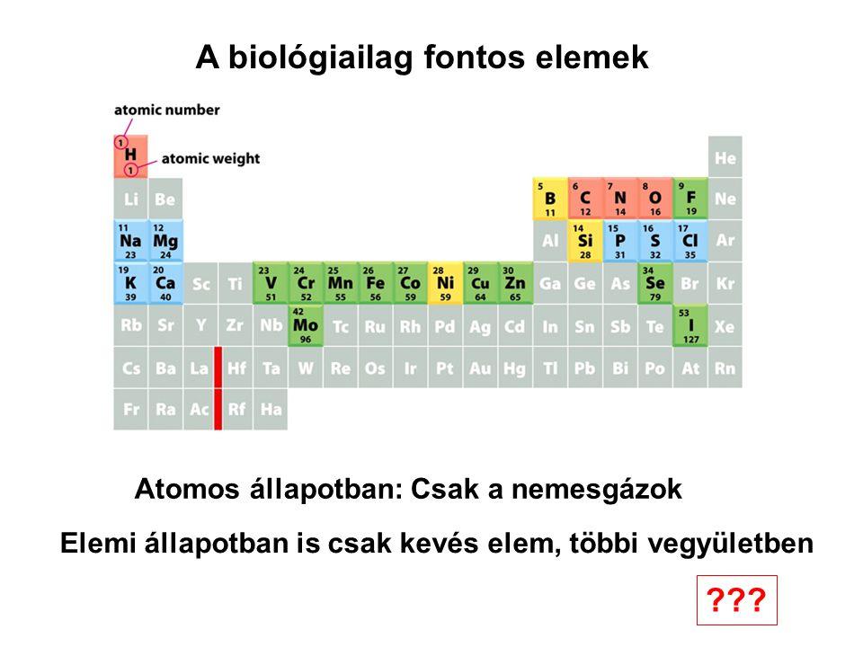 A biológiailag fontos elemek