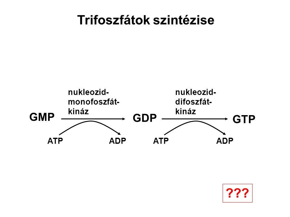 Trifoszfátok szintézise