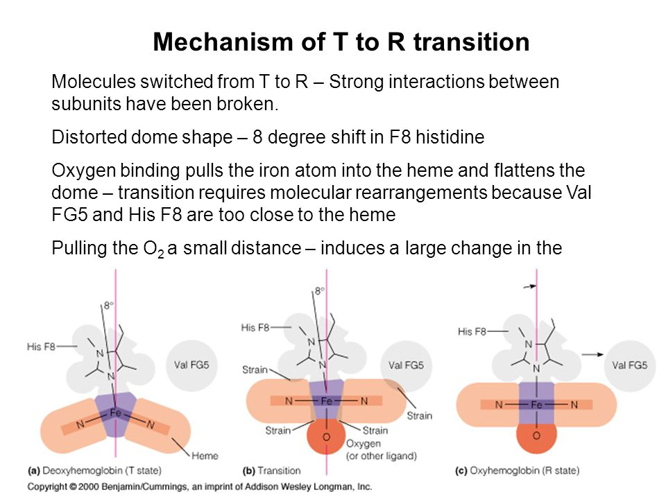 Mechanism of T to R transition
