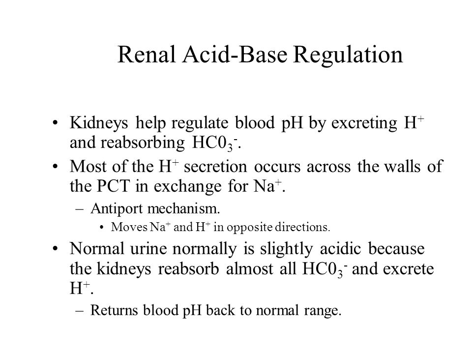 Renal Acid-Base Regulation