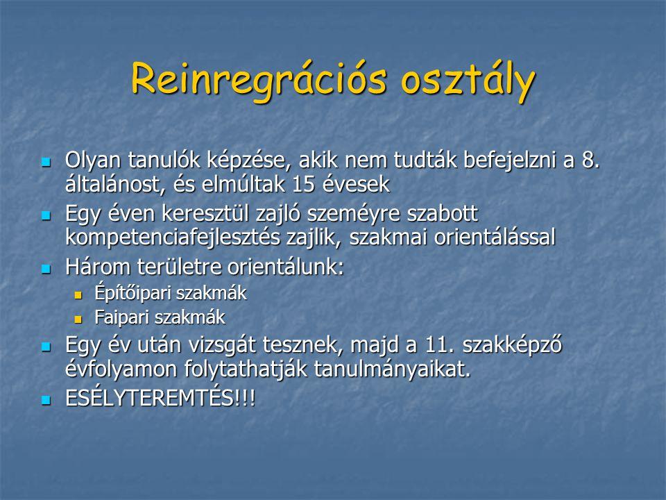 Reinregrációs osztály
