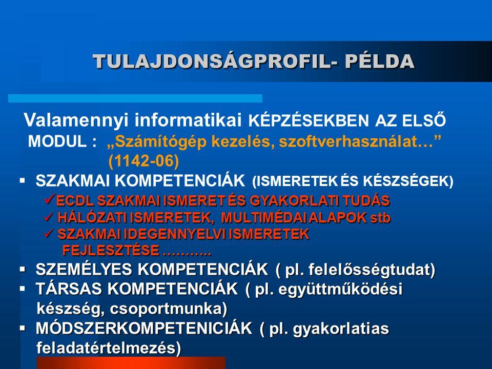 TULAJDONSÁGPROFIL- PÉLDA