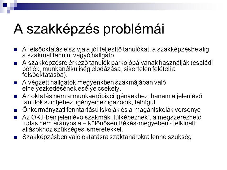 A szakképzés problémái