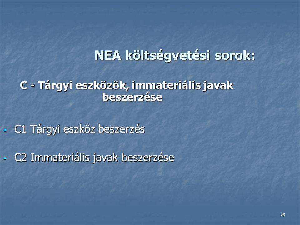 NEA költségvetési sorok: