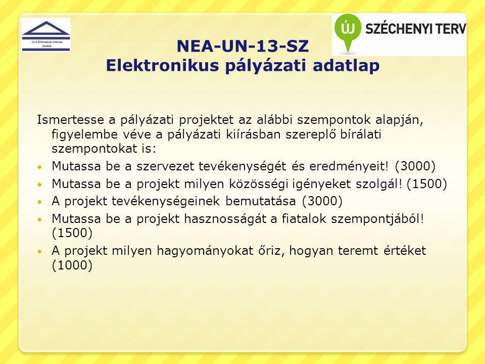 NEA-UN-13-SZ Elektronikus pályázati adatlap