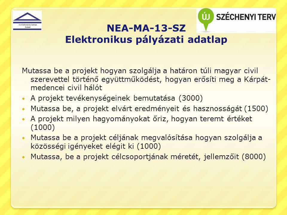 NEA-MA-13-SZ Elektronikus pályázati adatlap