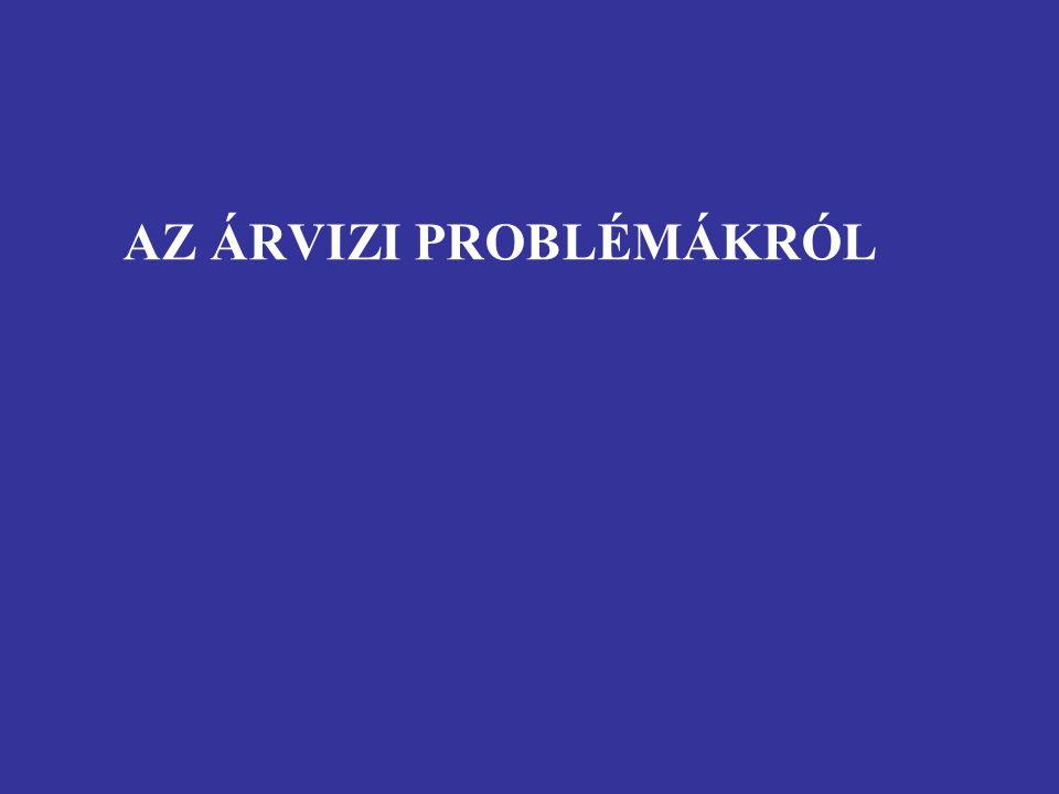 AZ ÁRVIZI PROBLÉMÁKRÓL
