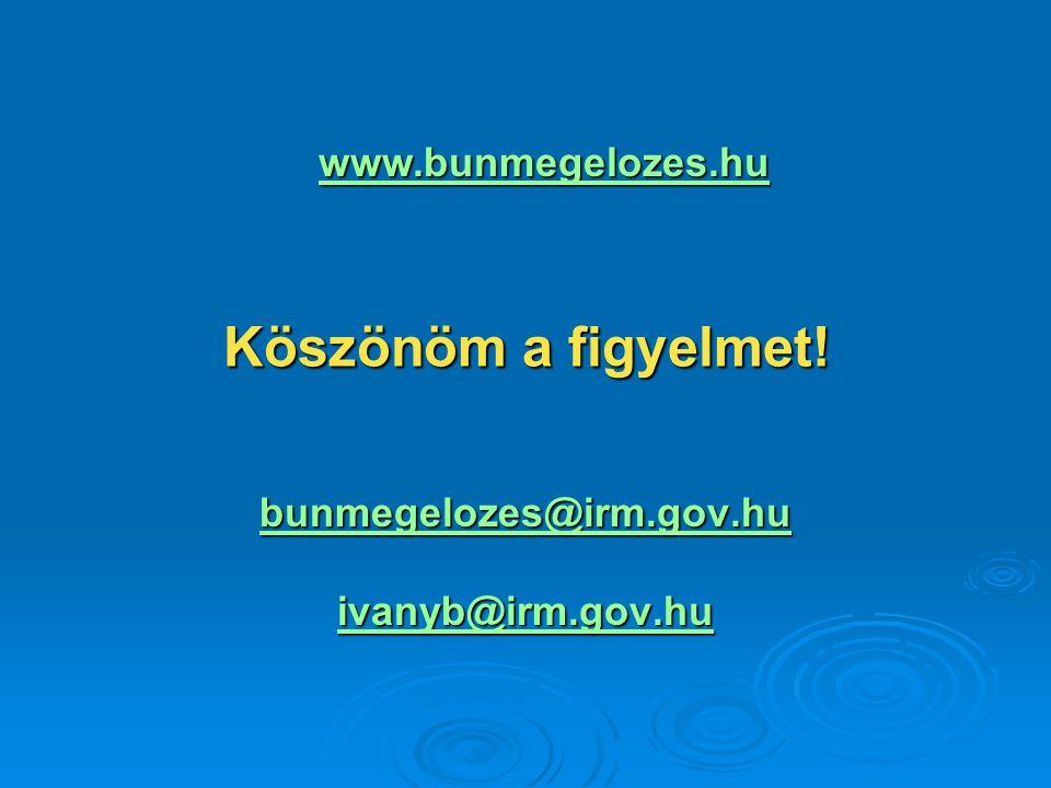 Köszönöm a figyelmet! www.bunmegelozes.hu bunmegelozes@irm.gov.hu