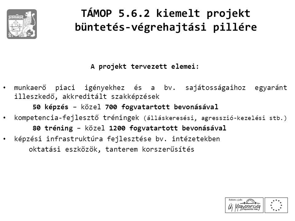 büntetés-végrehajtási pillére A projekt tervezett elemei: