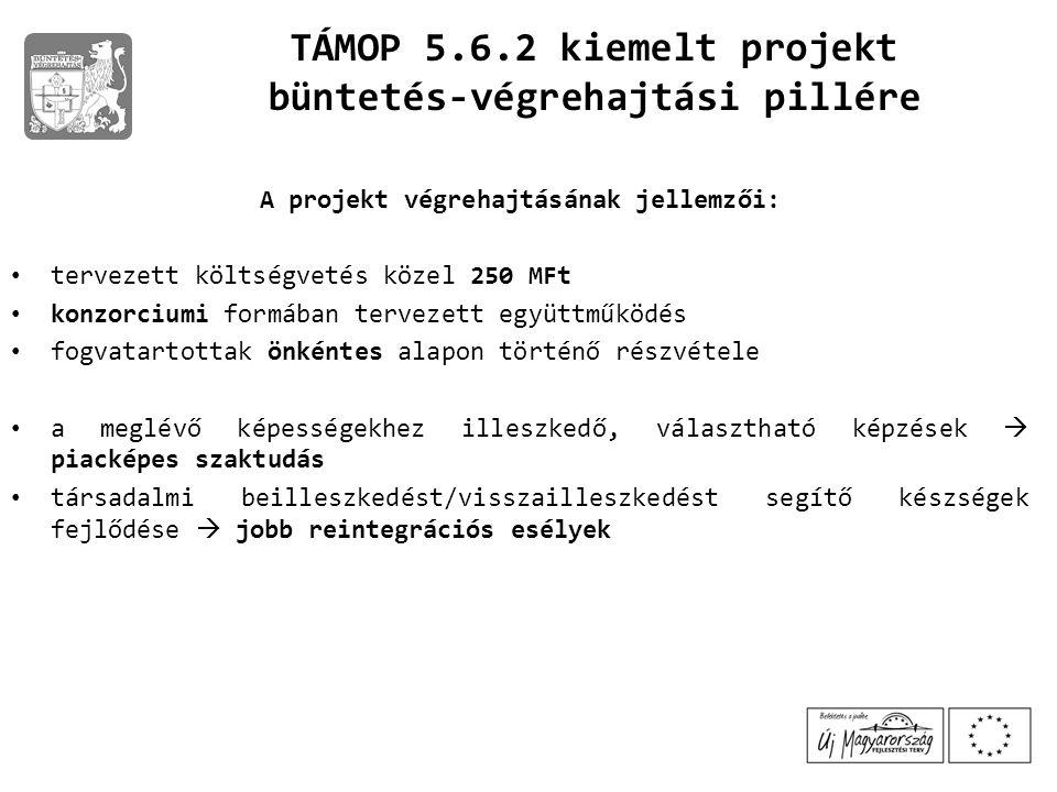 büntetés-végrehajtási pillére A projekt végrehajtásának jellemzői: