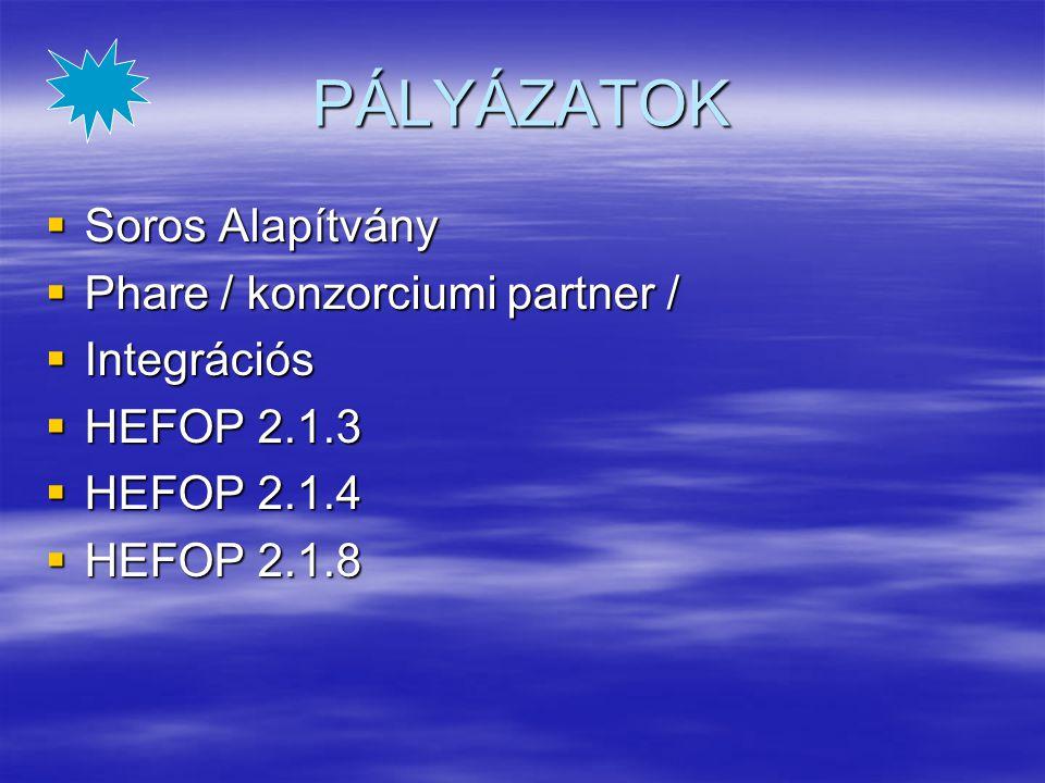 PÁLYÁZATOK Soros Alapítvány Phare / konzorciumi partner / Integrációs