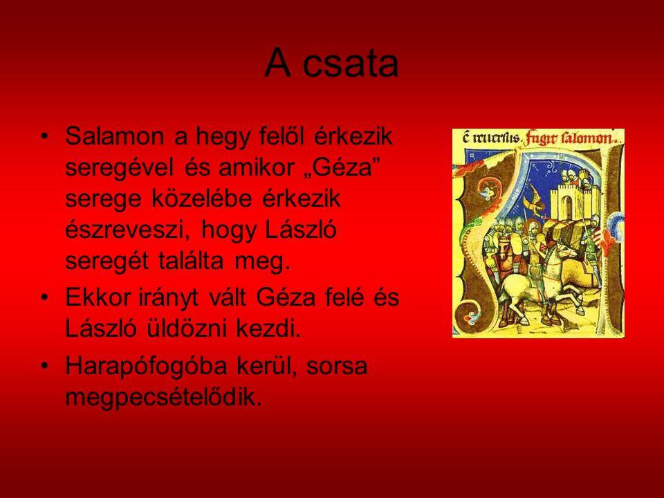 """A csata Salamon a hegy felől érkezik seregével és amikor """"Géza serege közelébe érkezik észreveszi, hogy László seregét találta meg."""