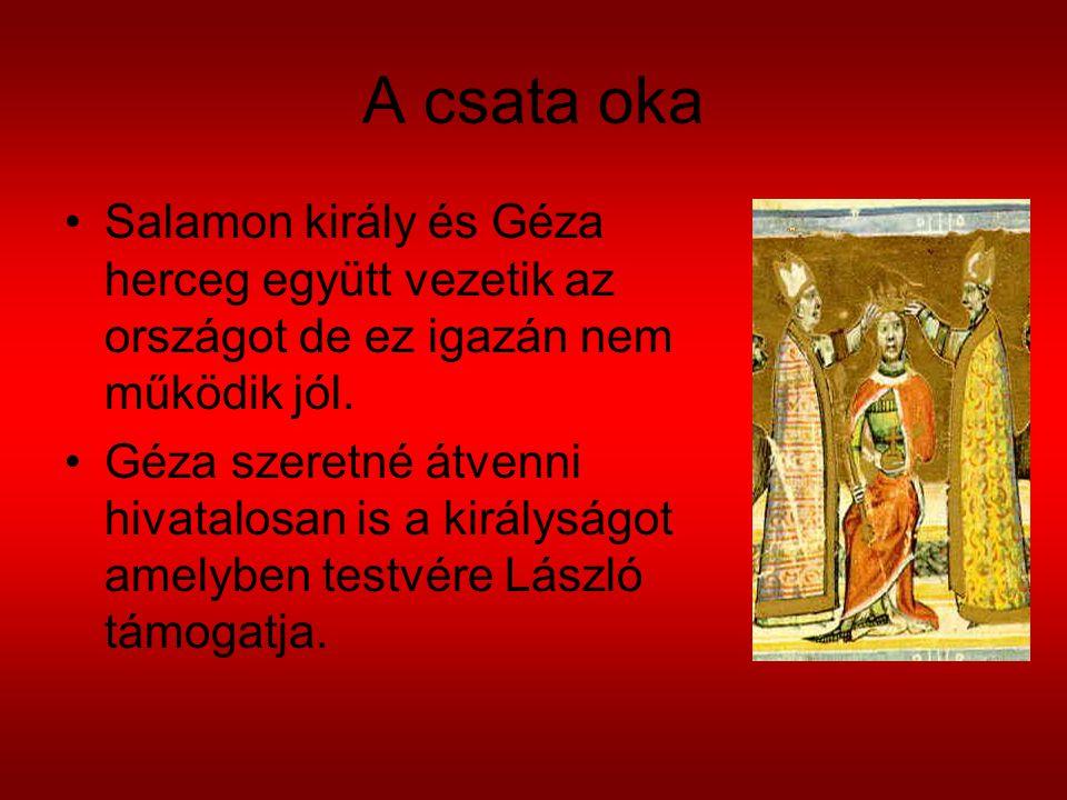 A csata oka Salamon király és Géza herceg együtt vezetik az országot de ez igazán nem működik jól.
