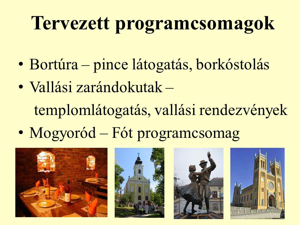 Tervezett programcsomagok