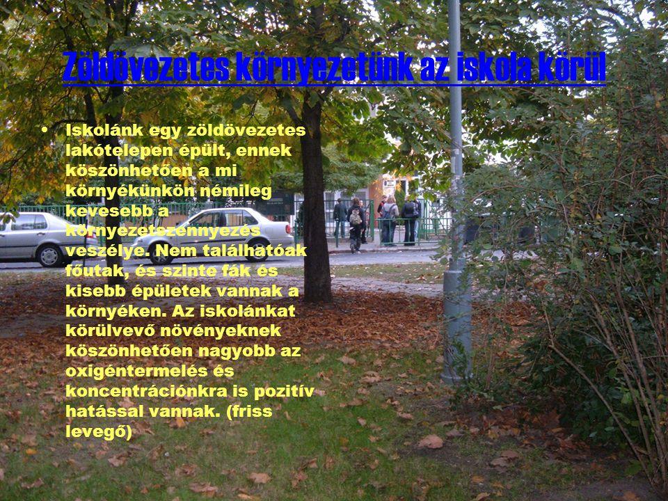 Zöldövezetes környezetünk az iskola körül