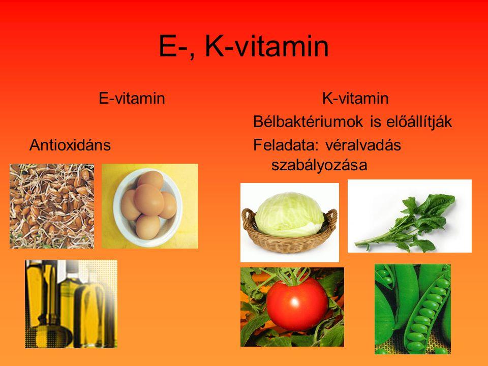 E-vitamin Antioxidáns