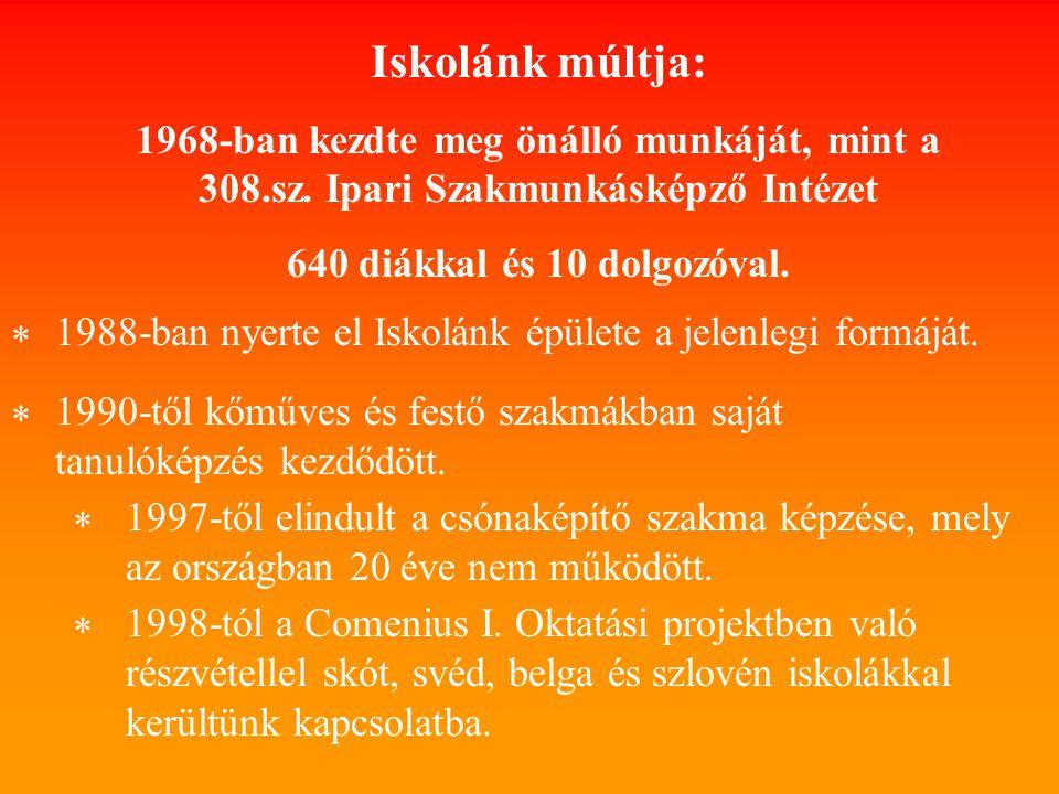 Iskolánk múltja: 1968-ban kezdte meg önálló munkáját, mint a 308.sz. Ipari Szakmunkásképző Intézet.
