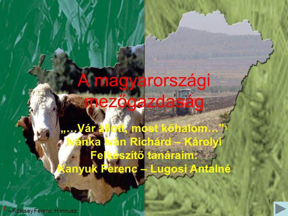 A magyarországi mezőgazdaság