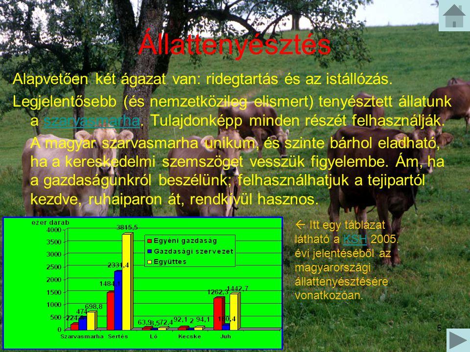 Állattenyésztés Alapvetően két ágazat van: ridegtartás és az istállózás.